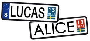 lucas-alice-2013