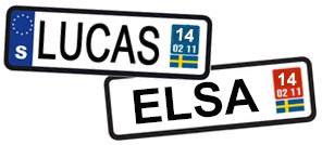 lucas-elsa-2014